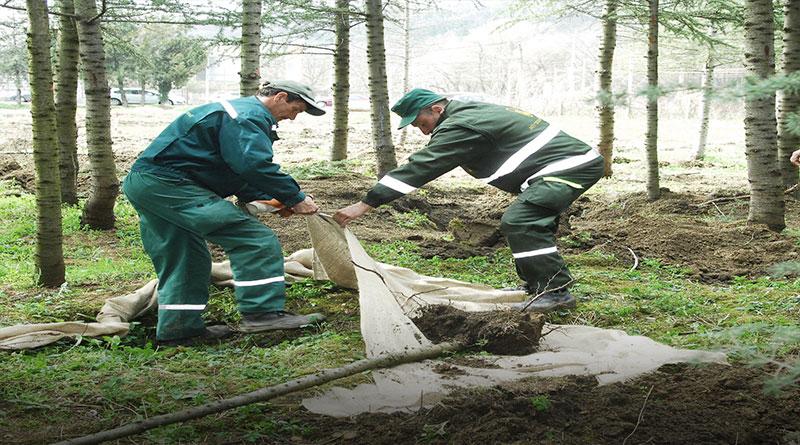 Topčiderska-šuma