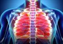 U Srbiji od raka pluća dnevno oboli čak 16 osoba