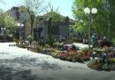 """Četvrti prodajni bazar cveća i sadnog materijala """"Najlepše iz prirode"""""""
