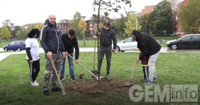 Aktivisti SNS posadili 110 stabala u Lazarevcu
